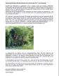 Vorbericht GDM Sparte Radsport